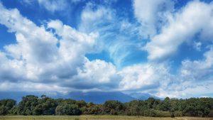 שמיים עננים עצים וירוק