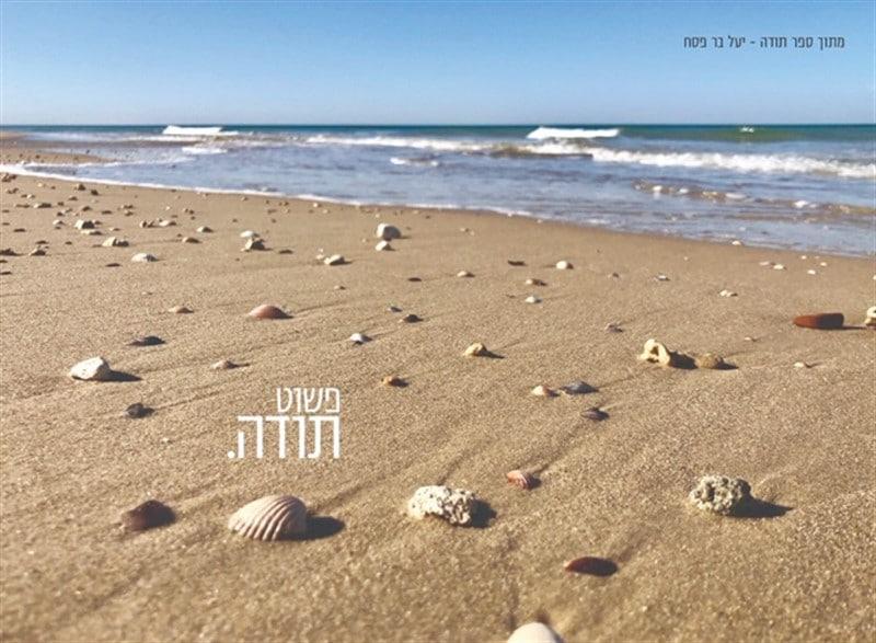 חוף ים, חול וצדפים ומבט אל ים עם גלים לבנים