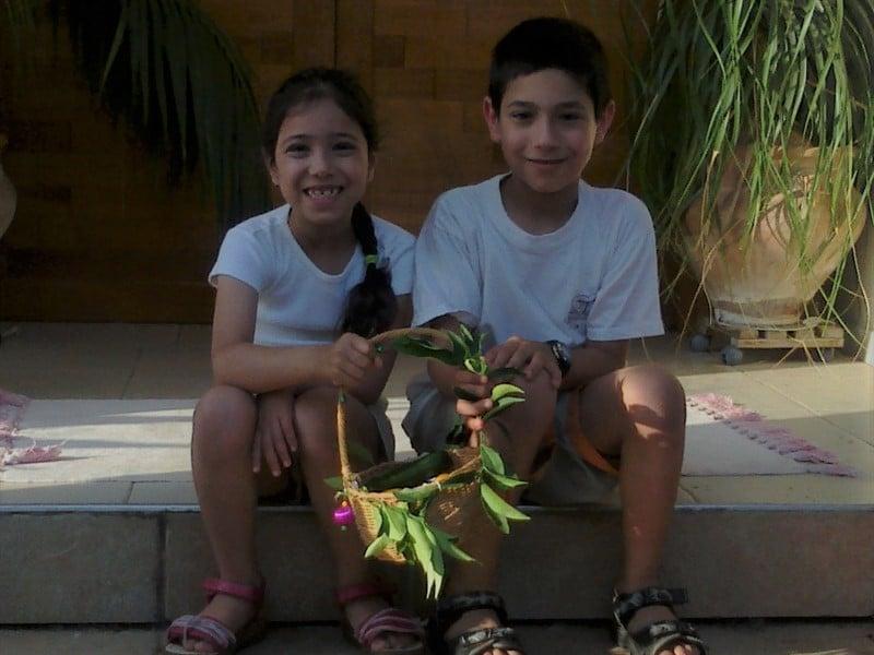 שני ילדים בחולצות לבנות יושבים על מדרגה לפני דלת כניסה. מחזיקים ביחד טנא אחד של חג שבועות.
